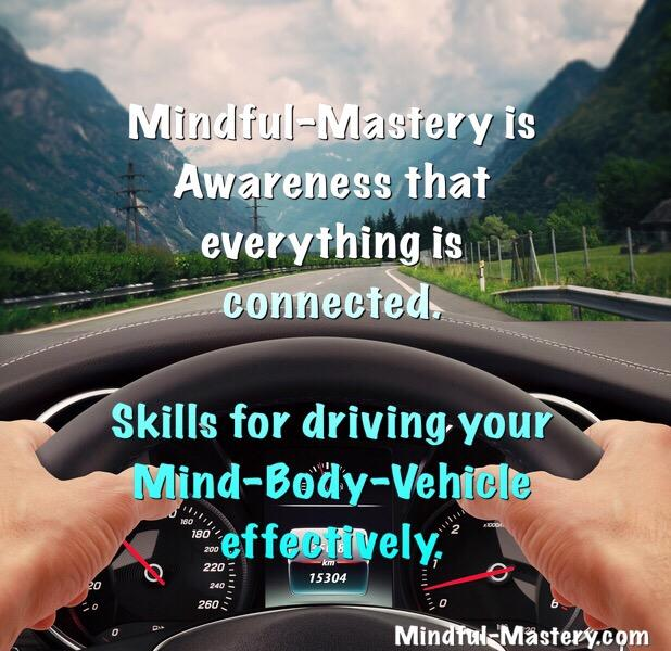 Your Mind-Body Vehicle: A Holistic View of Resilience