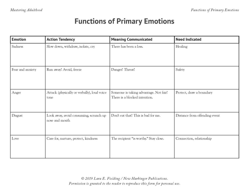 Function of Emotions